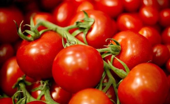 Il Pomodoro a Grappolo: dalla coltivazione alla tavola
