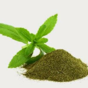 Fichera Blog stevia