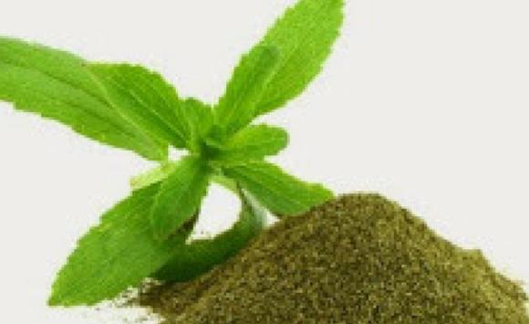 Un Martedì Grasso addolcito con la stevia