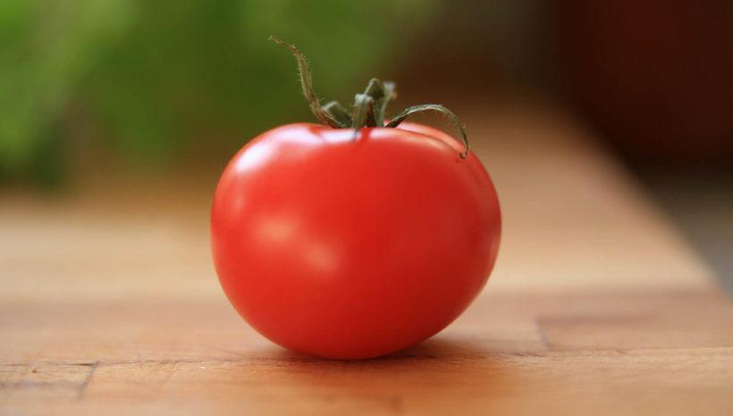 Alla scoperta delle materie prime della nostra cucina: il Pomodoro